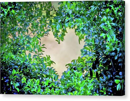 Heart Shape Canvas Print - Love Leaves by Az Jackson