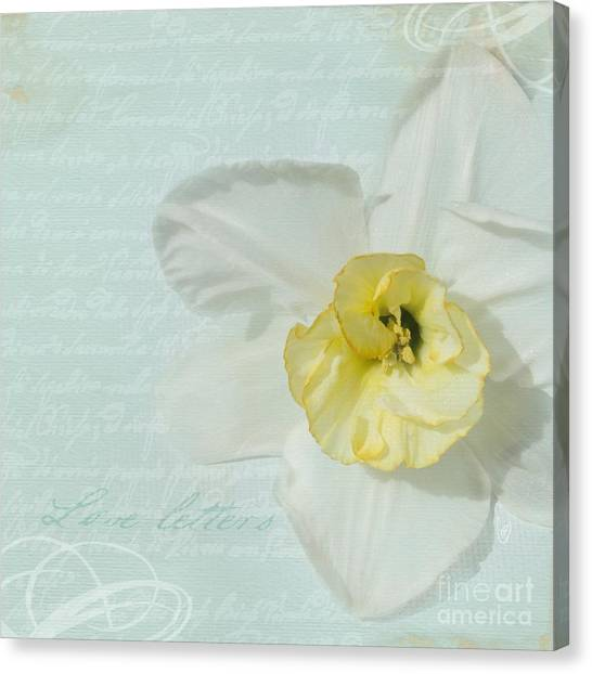 Love Letters From A Spring Romance Canvas Print