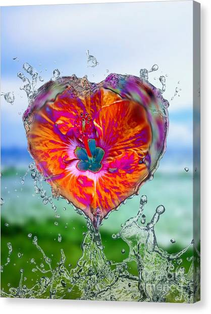 Love Makes A Splash Canvas Print