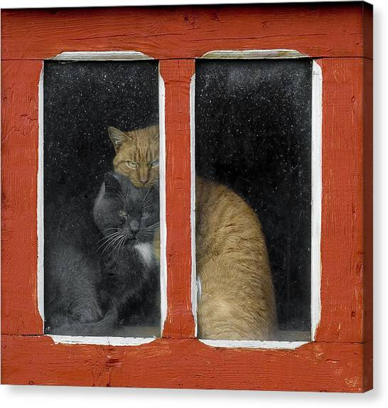 Window Canvas Print - Love by Mihnea Turcu