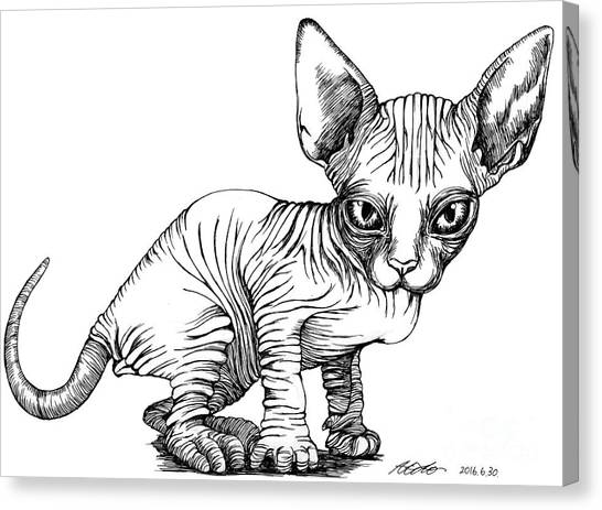 Love Sphynx Canvas Print