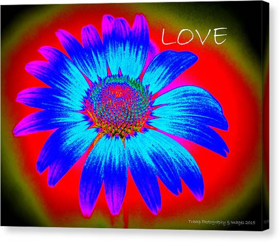 Love Canvas Print