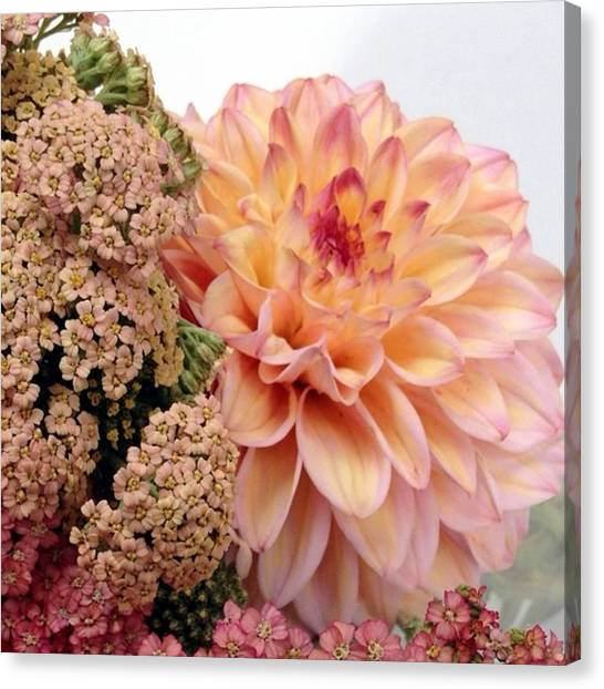 Pastel Canvas Print - Dahlia Flower Bouquet by Blenda Studio
