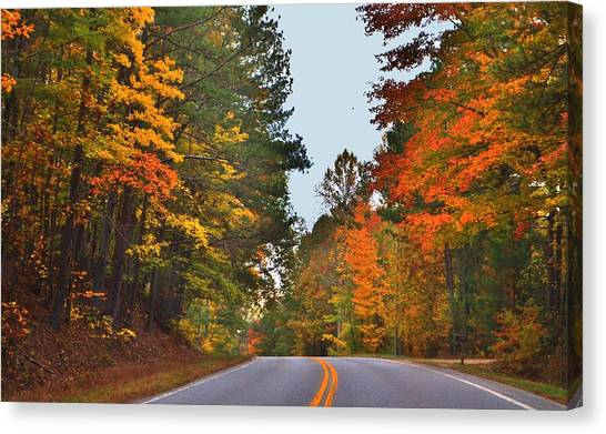 Lovely Autumn Trees Canvas Print