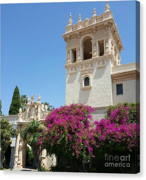 Lovely Blooming Day In Balboa Park San Diego Canvas Print
