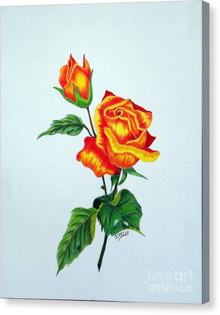 Lovely Rose Canvas Print