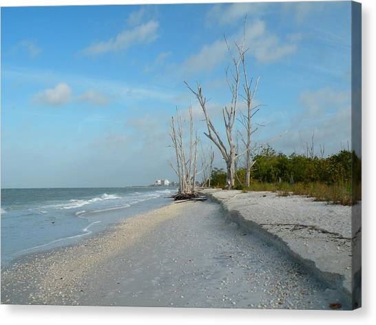 Lovers Key Beach Canvas Print by Rosalie Scanlon