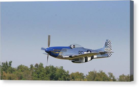 Low Flyer Canvas Print by Donald Tusa
