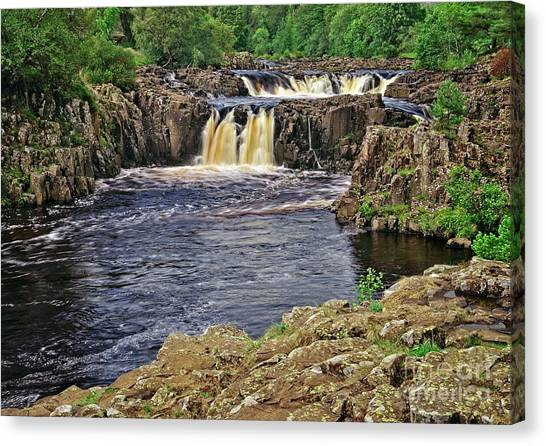 Low Force Waterfall, Teesdale, North Pennines Canvas Print