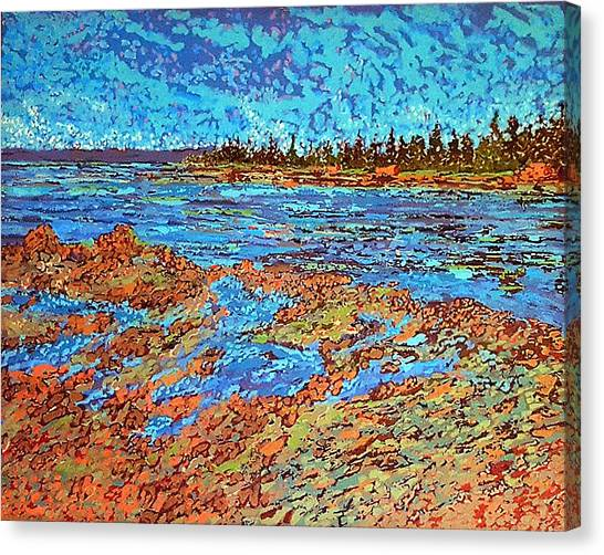 Low Tide Oak Bay Nb Canvas Print