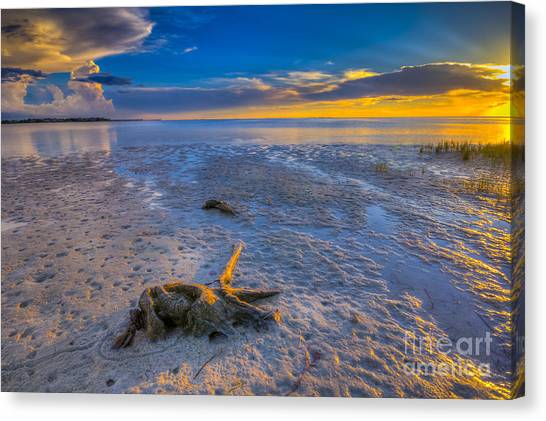 Thunder Bay Canvas Print - Low Tide Stump by Marvin Spates