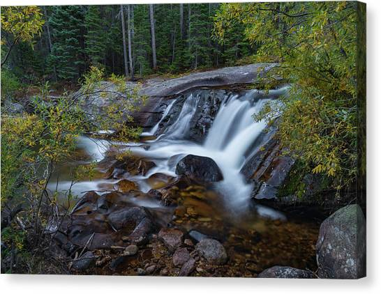 Lower Copeland Falls Canvas Print