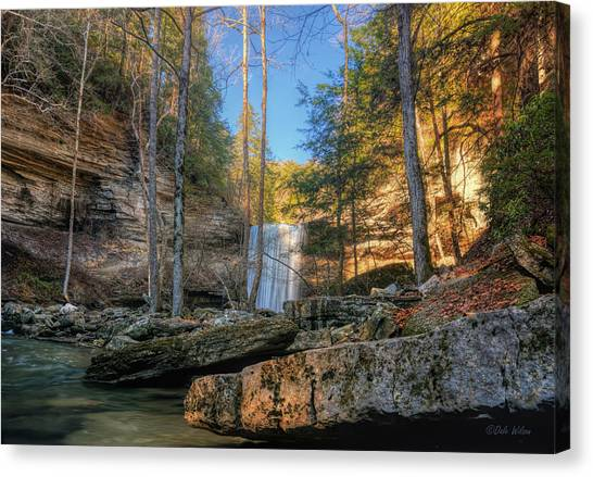 Lower Greeter Falls 2 Canvas Print by Dale Wilson