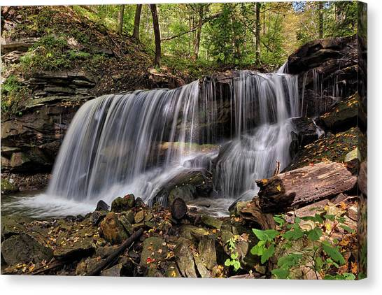 Wilderness Canvas Print - Lower Tews Falls by David Dehner