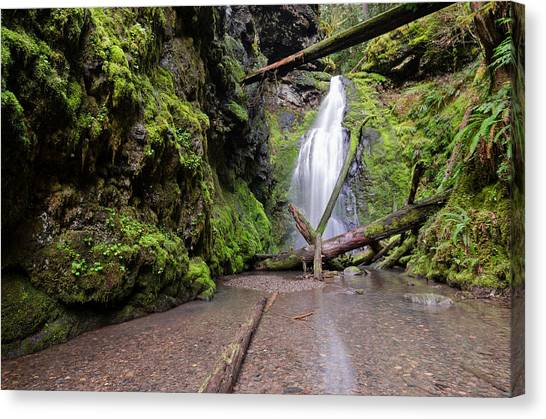 University Of Oregon Uo Canvas Print - Lower Trestle Creek Falls by Margaret Pitcher