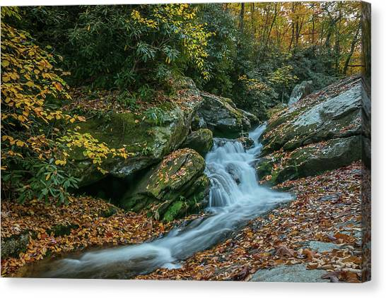 Lower Upper Creek Falls Canvas Print