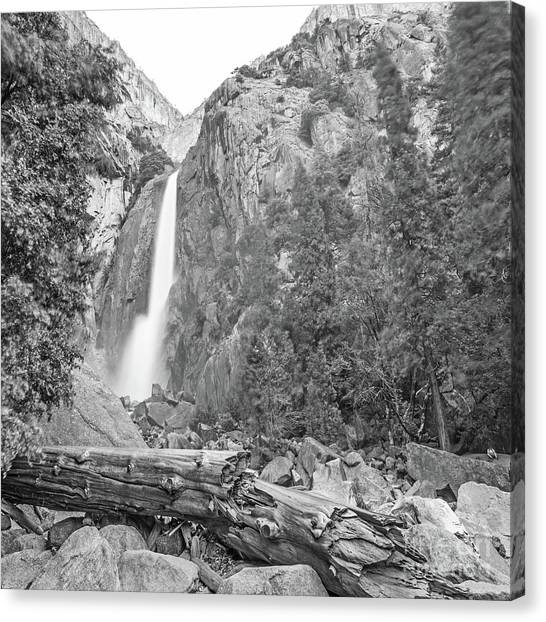 Lower Yosemite Falls In Black And White By Michael Tidwell Canvas Print