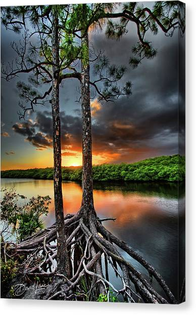 Loxachatchee Sunset Canvas Print