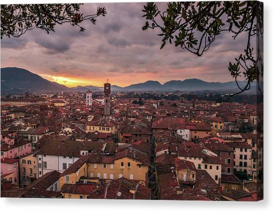 Lucca In Tuscany Canvas Print