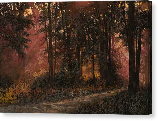 Bush Canvas Print - Luci Nel Bosco by Guido Borelli