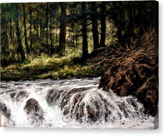 Canvas Print - Lucia Falls In July by Jim Gola