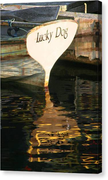 Lucky Dog Canvas Print
