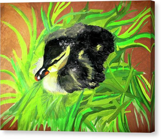 Lucky Duckling Canvas Print