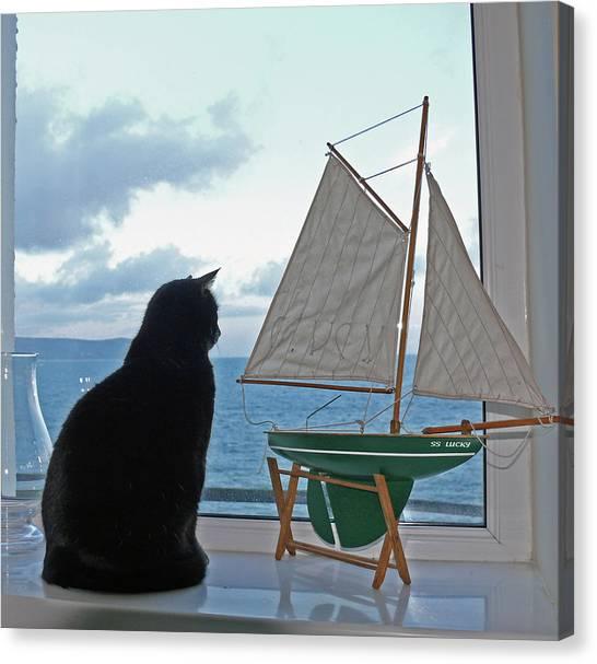 Lucky The Sleepycat Canvas Print