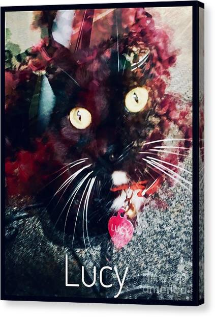 Lucy The Cat Canvas Print