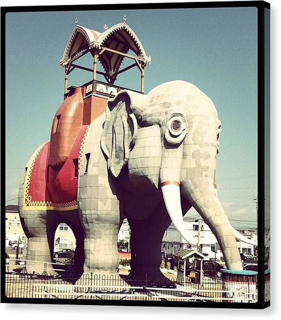 Large Mammals Canvas Print - Lucy The Elephant   by Tim Paul