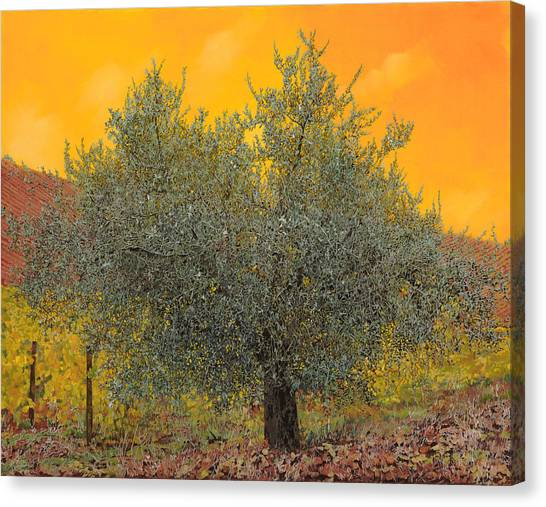 Oils Canvas Print - L'ulivo Tra Le Vigne by Guido Borelli