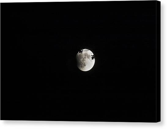 Lunar Eclipse Starting Canvas Print by Mark Russell