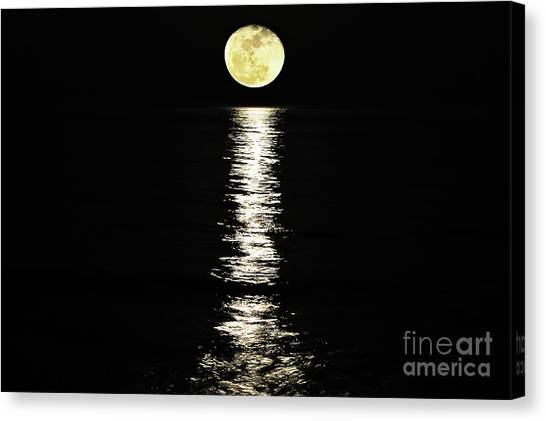 Lunar Lane Canvas Print