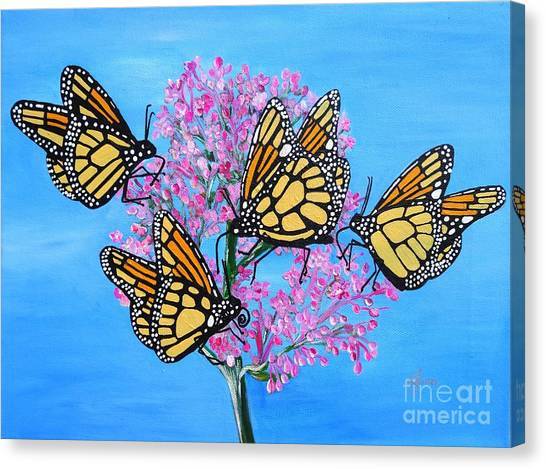 Butterfly Feeding Frenzy Canvas Print