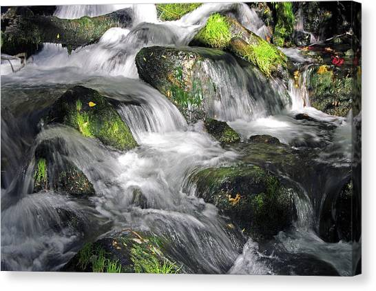 Lundy Creek 2 Canvas Print