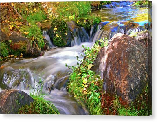 Lundy Creek Canvas Print