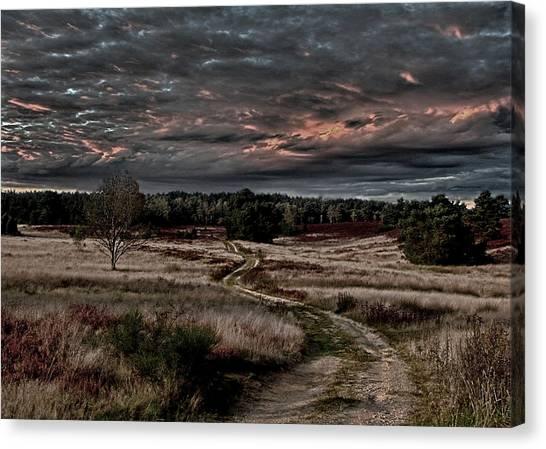 Moorland Canvas Print - Luneburg Heath by Joachim G Pinkawa