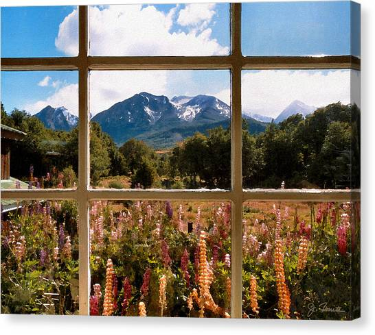 Lupines And Mountains Canvas Print