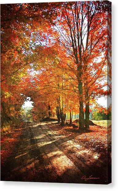 Lupton Road Canvas Print
