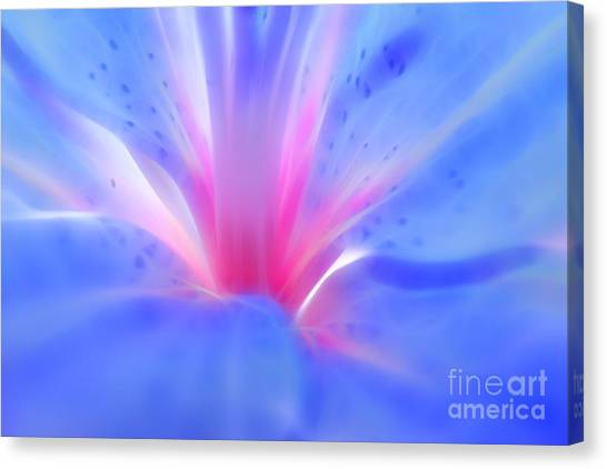 Abstract Lily Canvas Print - Luscious Lily by Krissy Katsimbras