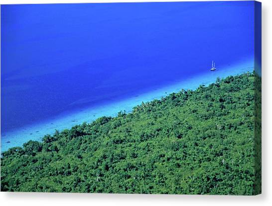 Lush Coast And Blue Waters Of The Sea Surrounding Mosso Island Canvas Print by Sami Sarkis