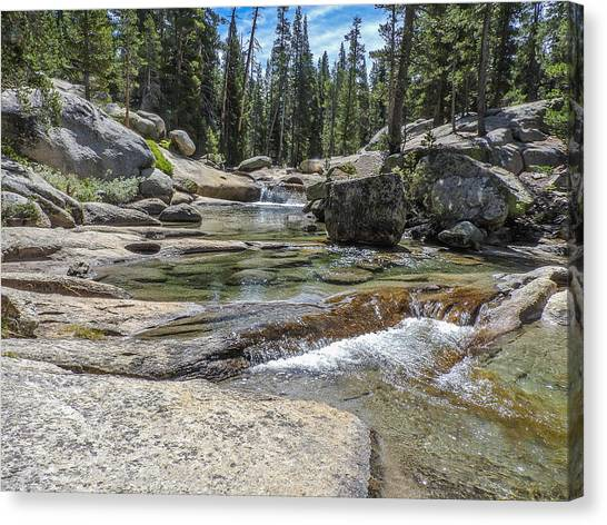 Lyell Fork Tuolomne River Yosemite National Park Canvas Print