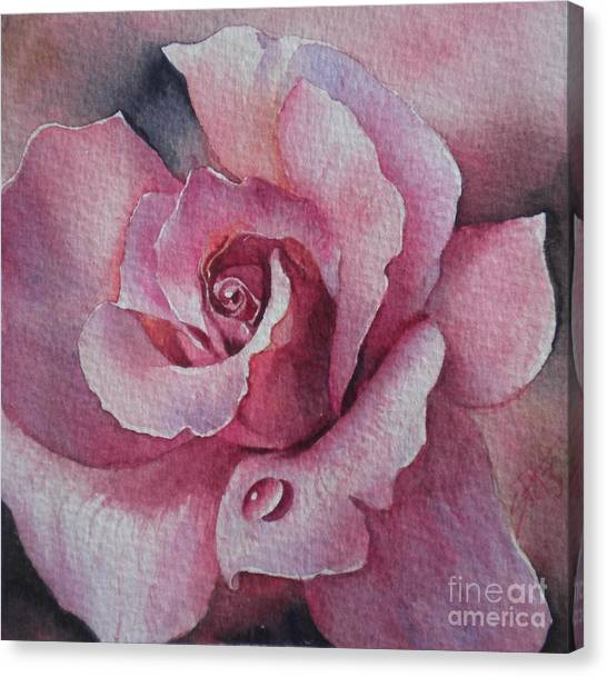 Lyndys Rose Canvas Print