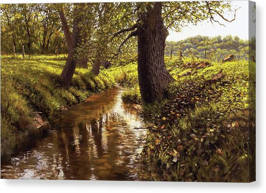 Lyon Valley Creek Canvas Print