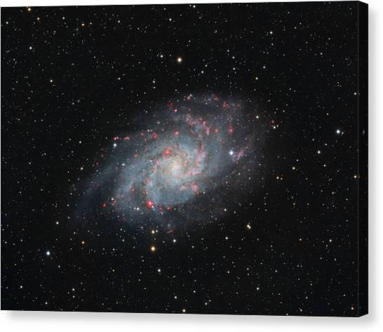 M33 - Triangulum Canvas Print