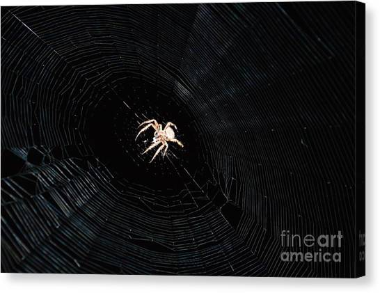 Weaver The Second Canvas Print