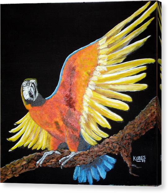 Macaw - Wingin' It Canvas Print by Susan Kubes