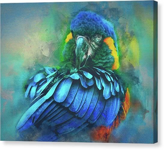 Macaw Magic Canvas Print