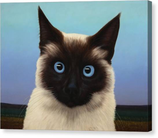 Siamese Canvas Print - Machka 2001 by James W Johnson