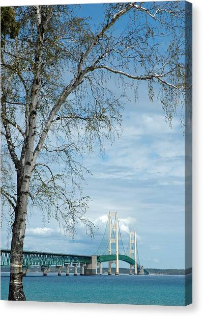 Mackinac Bridge Birch Canvas Print